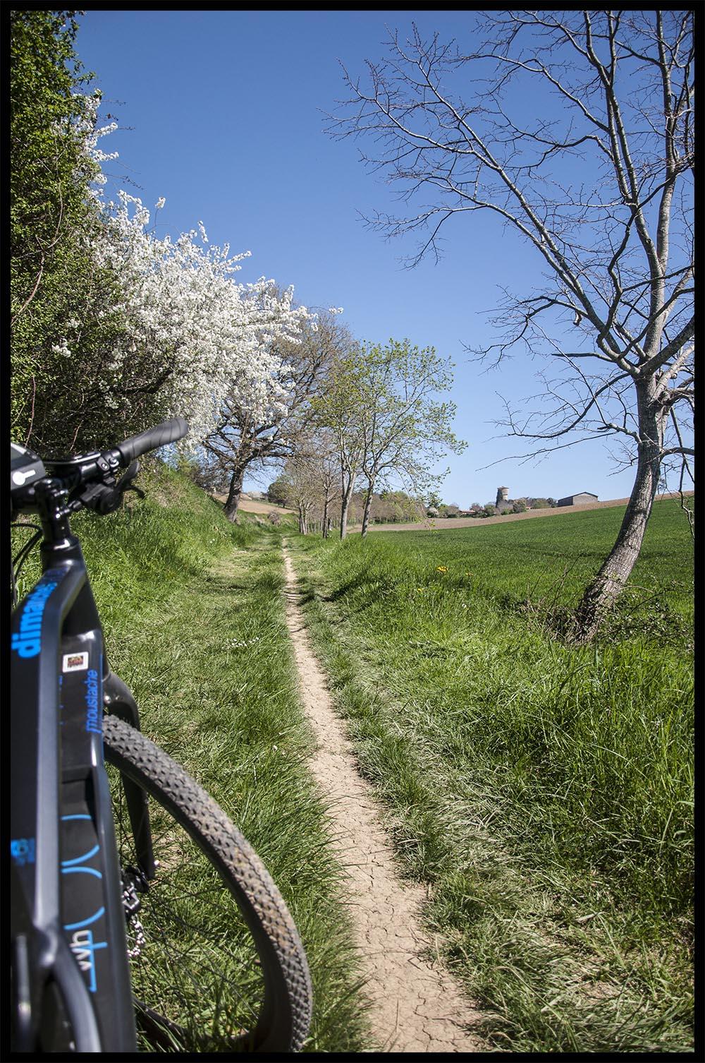 Balade à Vélo électrique autour de Clermont le Fort
