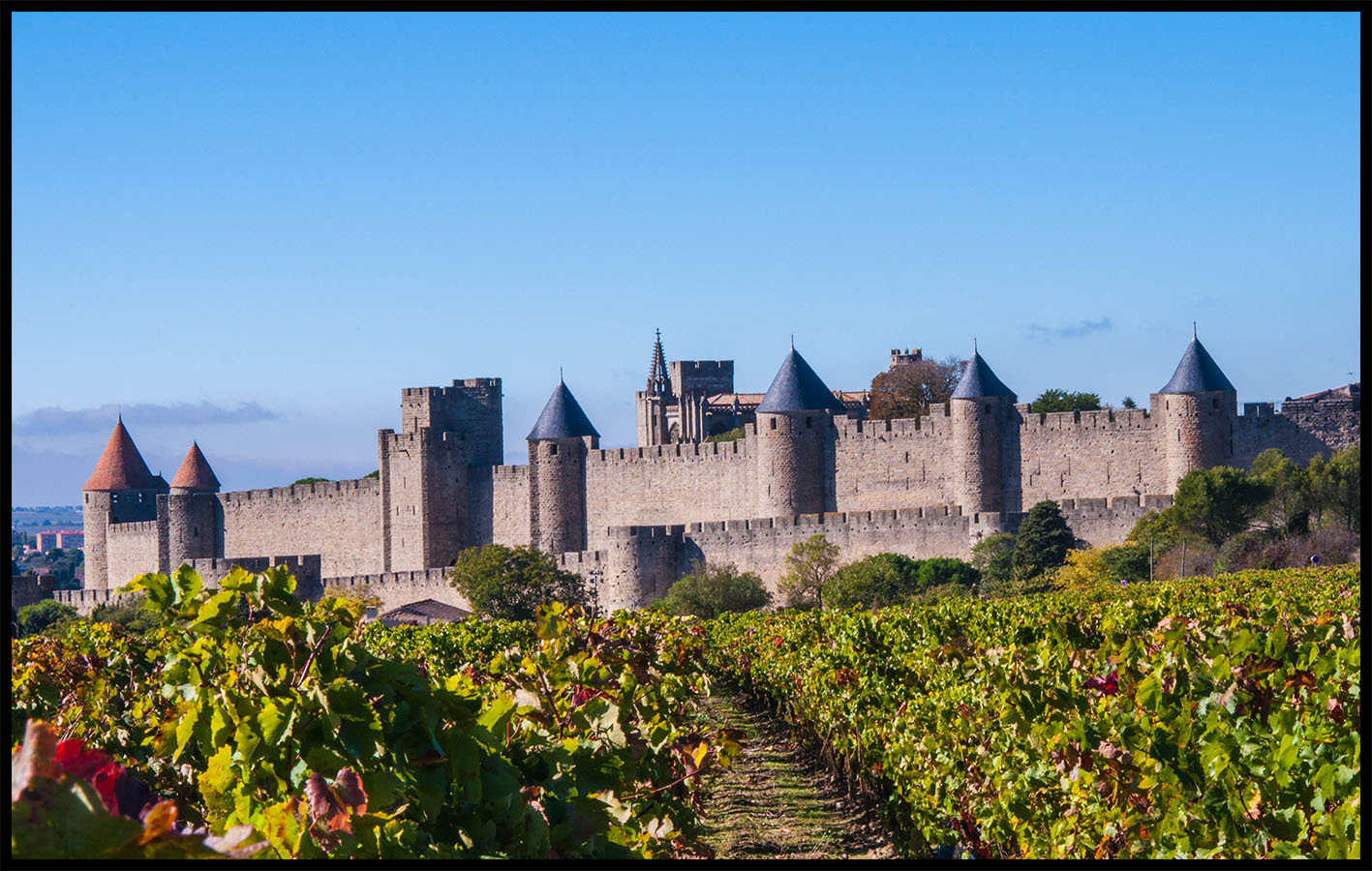 Carcassonne E-bike Tour