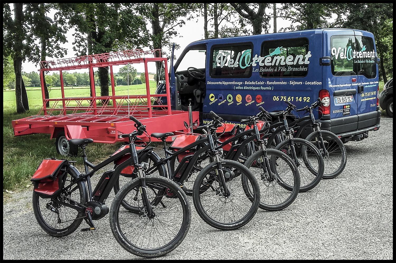 Électric Bikes