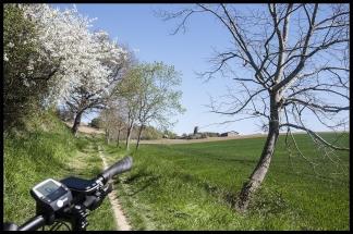 Balade à Vélo Électrique à Clermont le Fort