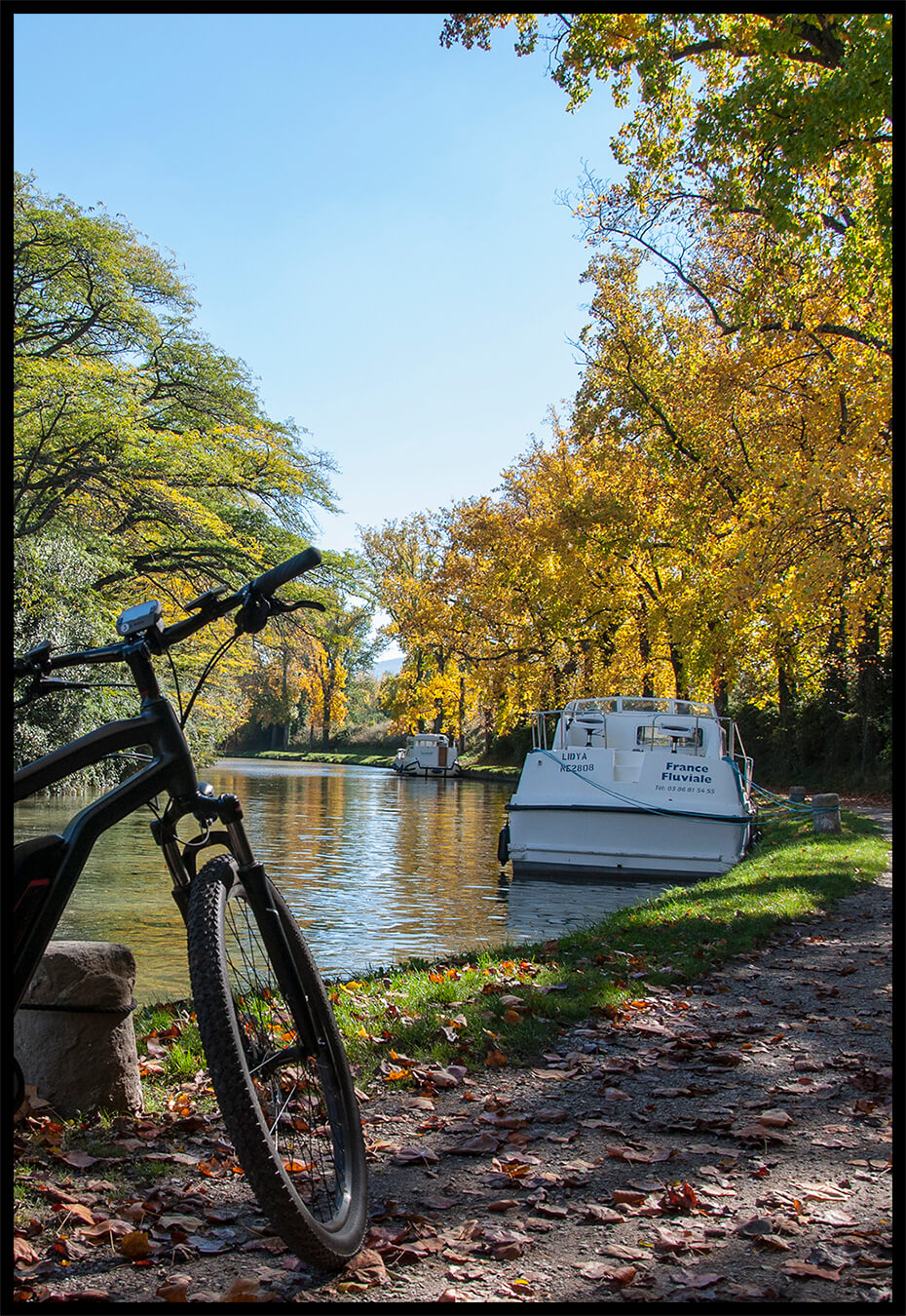 E-bike tour on the banks of the Canal du Midi