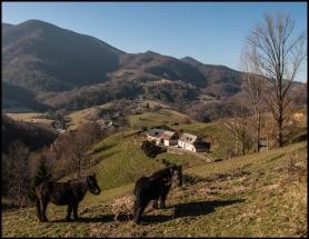 Pyrénées à Vélo Électrique