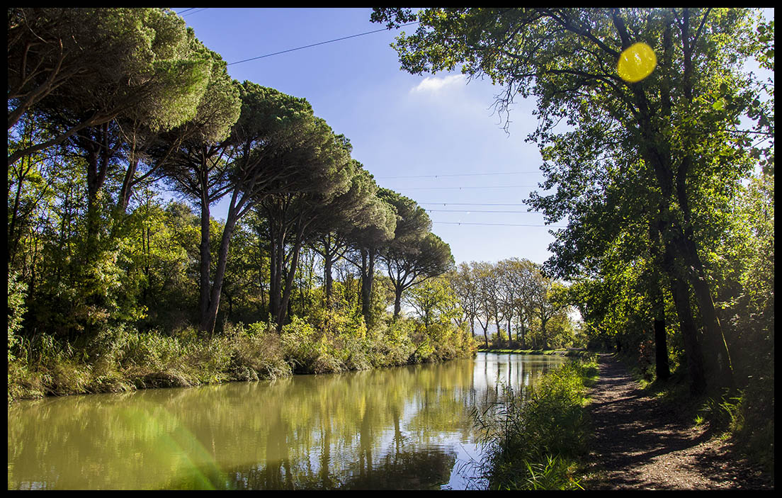 Ride along The Canal du Midi with an E-Bike