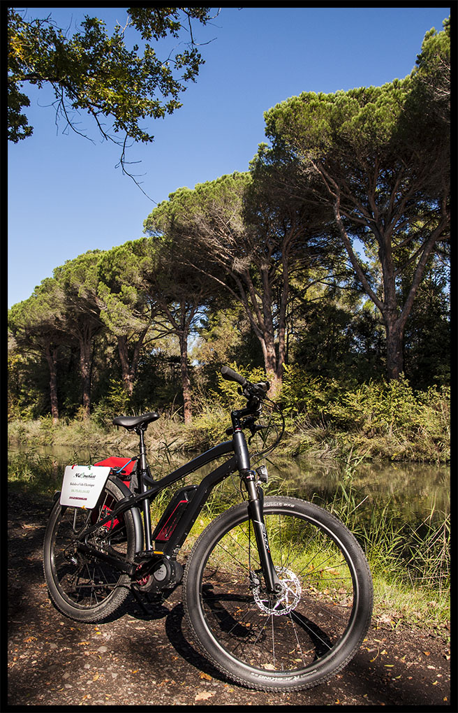 E-Bike Tour on The Canal du Midi